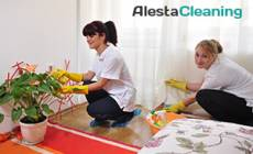 Alesta Cleaning