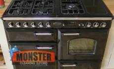 Monster Cleaning Ilford