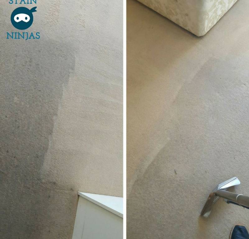 Fresh And Clean Carpet Cleaning Sheffield Carpet Cleaners